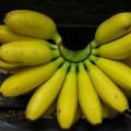 バナナは保存性と引き換えに甘さを失った