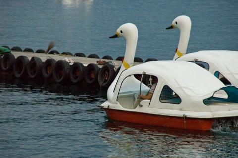 男性の更年期障害が足こぎボートで軽くなる理由
