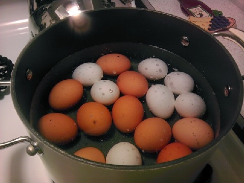 ゆで卵ダイエットで一週間で4.2kg減に成功