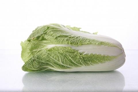 白菜の保存は50度のお湯にいったん浸してから