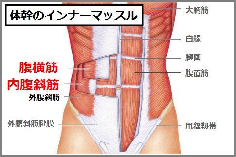 体幹のインナーマッスルを鍛える