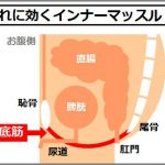 高齢や向けのインナーマッスル強化に骨盤底筋