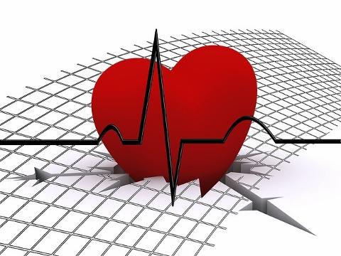 スポーツ心臓は持久系と瞬発系で少し違っている