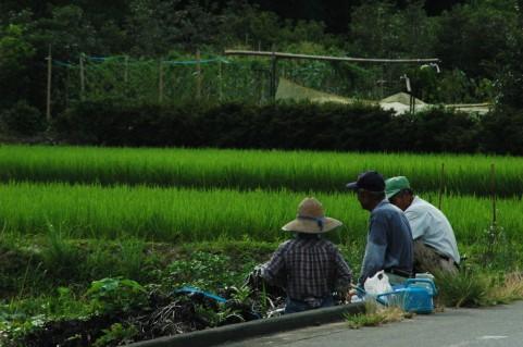 日本人の平均寿命が延びた理由は健康ではない