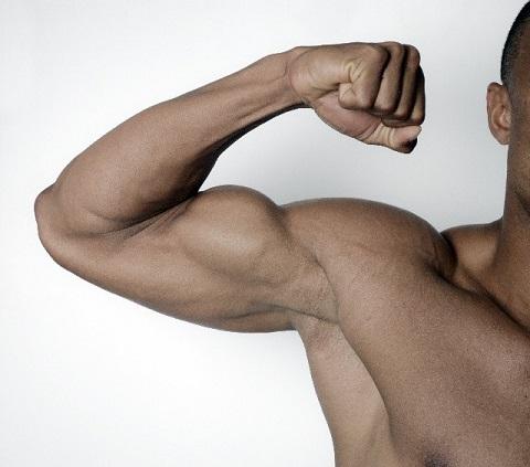 筋肉は種類によって鍛えられる運動が違っている