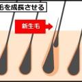 薄毛を改善するシャンプー法!タイプ別に解説