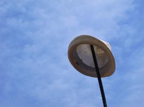 オプジーボで変わるメラノーマの生存率