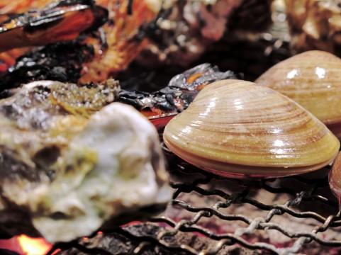 蒸し牡蠣のプリプリ食感を家庭で楽しむレシピ