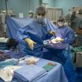心不全治療で心筋を再生させる細胞シート治療