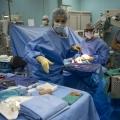 細胞シート治療で心筋を再生する2回の手術とは?