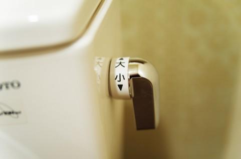 水洗トイレはフタをしてから流すのが正解だった