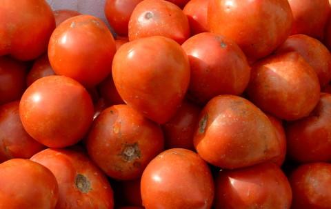 リコピンの効果はトマトが完熟しているほど高い