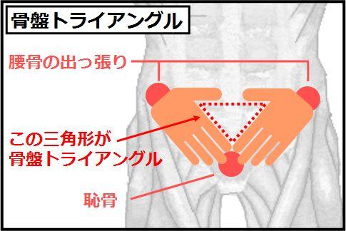 大腰筋を鍛えるための骨盤トライアングル