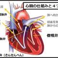 心臓弁膜症で咳が長く続く理由