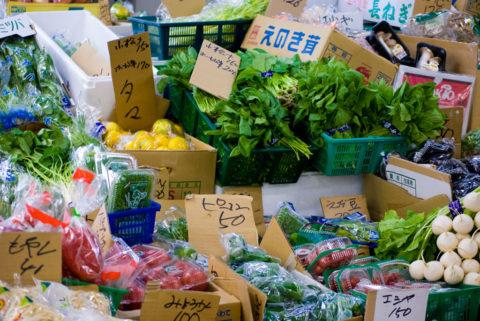 糖尿病の食事で野菜を食べる効能が間違っていた