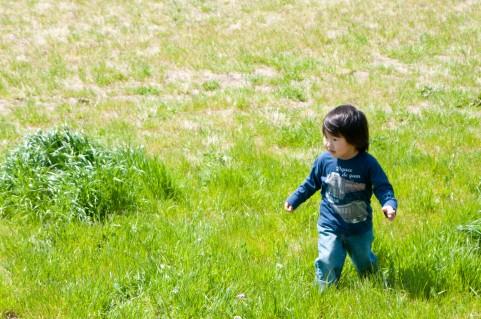 子どもが育つ魔法の言葉「アメとムシ」とは?